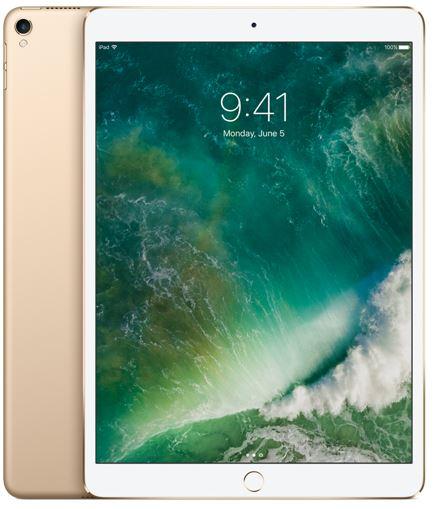 iPad Pro Wi-Fi 256GB - Gold