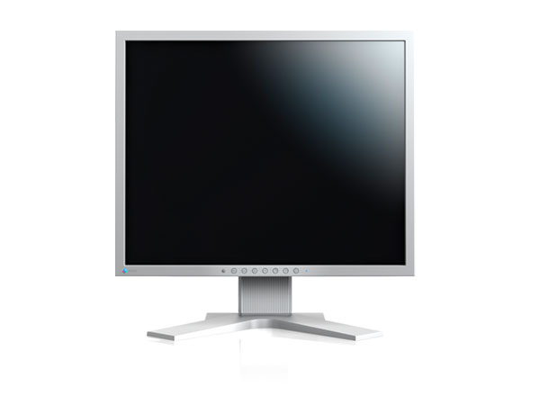 21' LED EIZO S2133-1600x1200,IPS,420c,DP,USB,piv,G