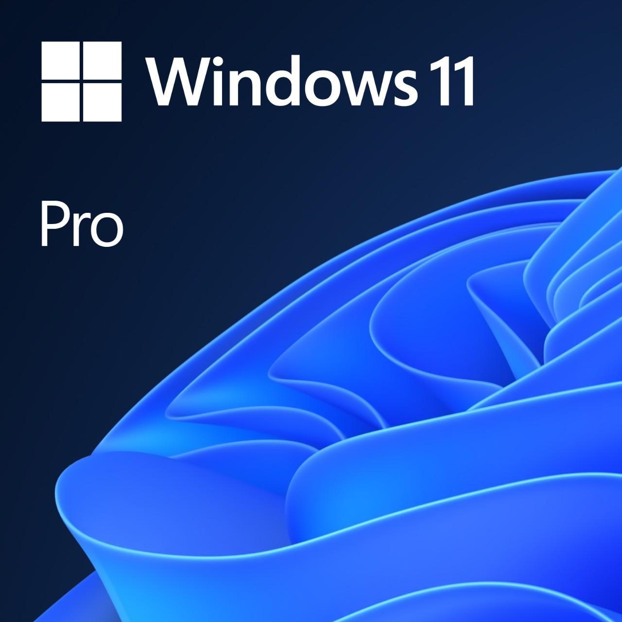 MS Win 11 Pro 64-bit Eng 1pk OEM DVD