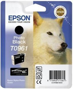 EPSON SP R2880 Photo Black (T0961)